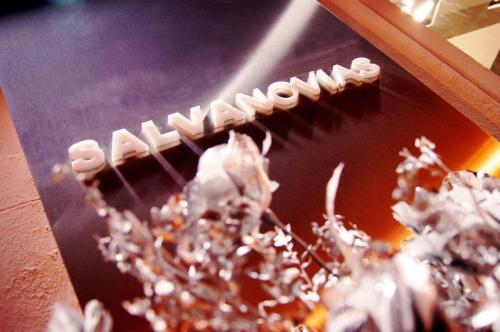 salvanovias1