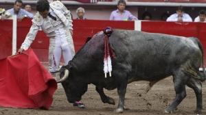 Las corridas de toros enfrentan la oposición de los defensores de animales en varios estados de Mexico
