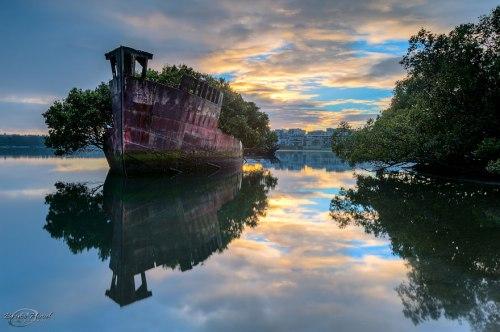 lugares terrorificos Bosque Flotante en Sydney, Australia