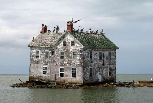 lugares terrorificos La Ultima Casa en Holland Island, U.S.A